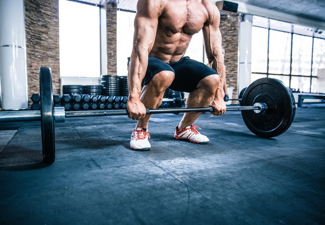 legal steroid cycles explained
